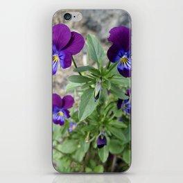 heartsease iPhone Skin
