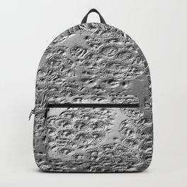 Damaged silver Backpack