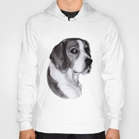 beagle Hoodies featuring Beagle by Danguole Serstinskaja