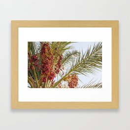 Byblos Palms Framed Art Print