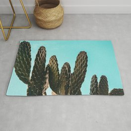 Cactus Photography Print {1 of 3} | Teal Succulent Plant Nature Western Desert Plants  Design Decor Rug