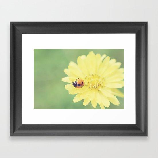 A Flower for My Lady Framed Art Print