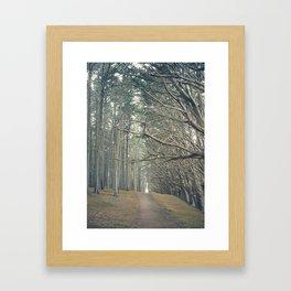 Path to the Sea Framed Art Print