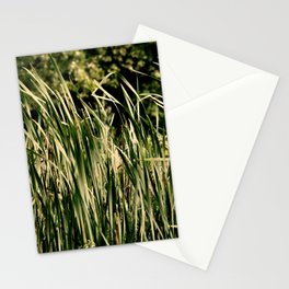 Tall Summer Grass Stationery Cards
