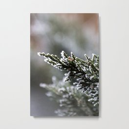 Pine Tree Covered with Snow Metal Print