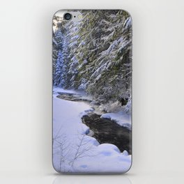 Snowy River iPhone Skin