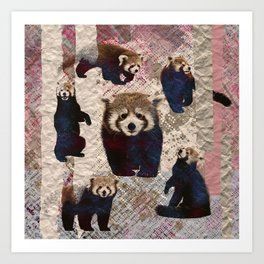 Red Panda Abstract  mixed media digital art collage Art Print