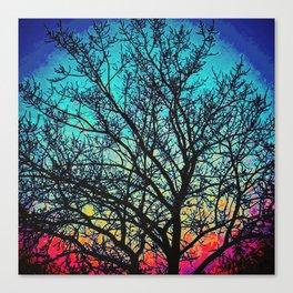 Vibrant Vignette Canvas Print