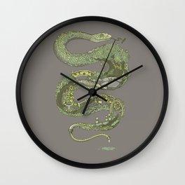 Garden Snake Wall Clock