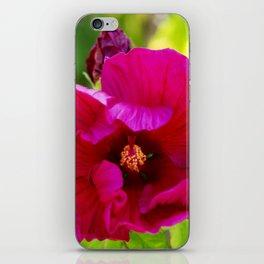 Jazzberry Jam Hibiscus iPhone Skin