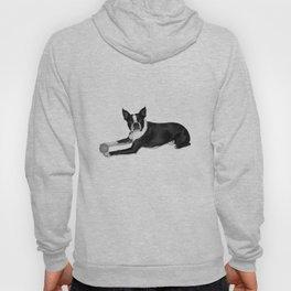 Fetch Boston Terrier B/W Hoody