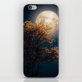 Under Full Moon iPhone Skin