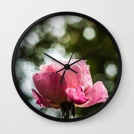 Pinkish Glory Wall Clock
