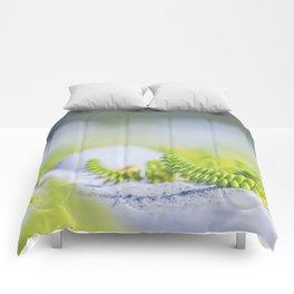 Minimal nature Fine Art photography Comforters