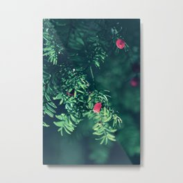 Autumn silance Metal Print