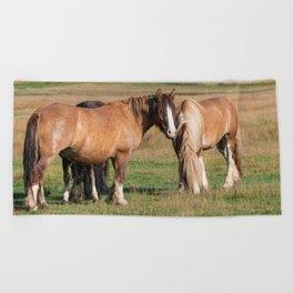 Gypsy_Vanner Horses 0271 - Colorado Beach Towel