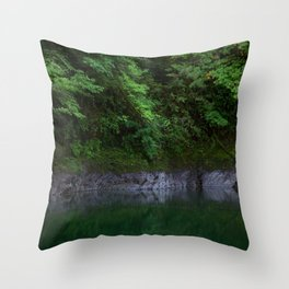 A Magical Pool in the Forest Throw Pillow