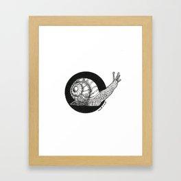 Snail (Circle Series #1) Framed Art Print