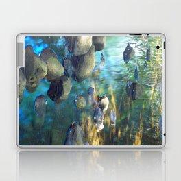 Stream of Tranquility Laptop & iPad Skin