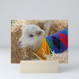 Lamb In from the Cold Mini Art Print