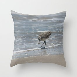 Willet with Crab breakfast Throw Pillow