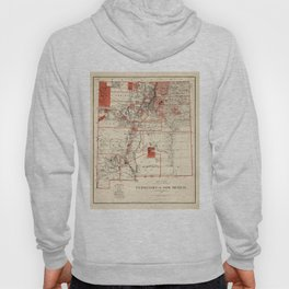 Vintage Map of New Mexico (1882) Hoody
