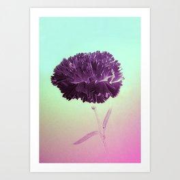 Purple Ruffles Art Print