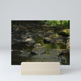 Forest Creek Mini Art Print