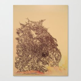 Grateful Soul, a tribute to Jerry Garcia Canvas Print