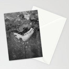 Humane  Stationery Cards