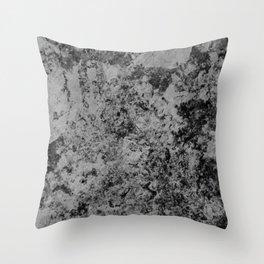 #1 Throw Pillow