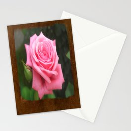 Pink Roses in Anzures 4 Blank P3F0 Stationery Cards