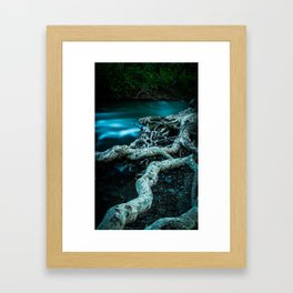 Rooted for Survival Framed Art Print