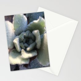 Naturals by Nikki - Lamb's Ear Plant Stationery Cards