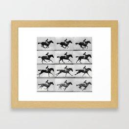 CAVALLO #1 Framed Art Print