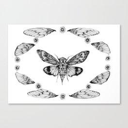 Cicada Summer Canvas Print