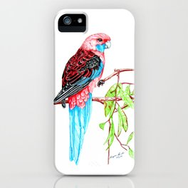 Blue Tail Parrot- Greenday iPhone Case