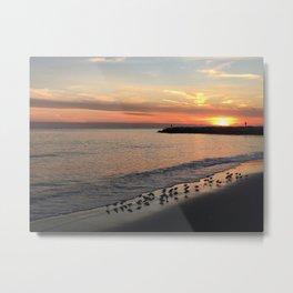 Beach sunset with birds Metal Print