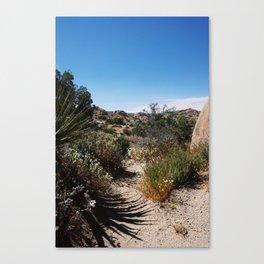 The Lushness of Joshua Tree Canvas Print