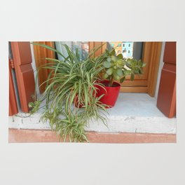 House Plants in Burano Rug