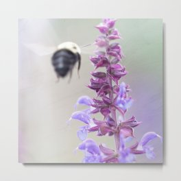 Purple and Bumble, 2 Metal Print