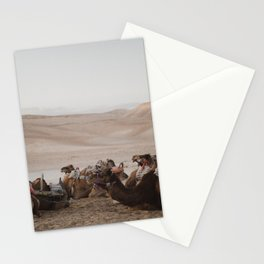 Camels in the Negev desert, Israel Stationery Cards