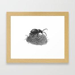 Inktobober 2016: Cactus Longhorn Beetle Framed Art Print