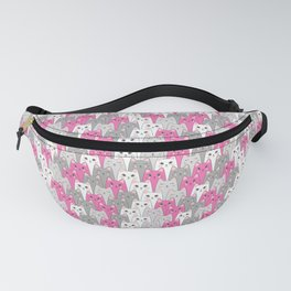056 Fanny Pack