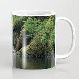 Punch Bowl Falls Coffee Mug
