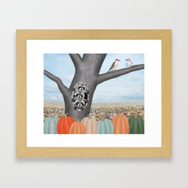 red bellied woodpeckers, heirloom pumpkins, and raccoons in a tree Framed Art Print