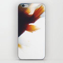 fish2 iPhone Skin