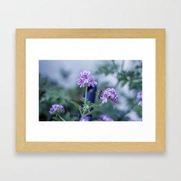 Spring Blues Framed Art Print