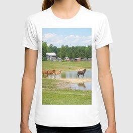 Horses. Animals. Nature Photography. Pennsylvania T-shirt