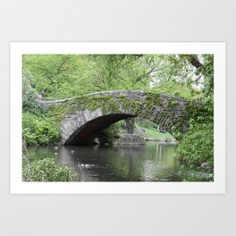 Gapstow Bridge  NYC Art Print